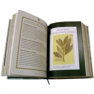 """Иллюстрации к подарочной книге """"Кулинарные секреты от знатных особ"""""""
