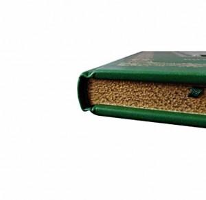 """Подарочное издание книги """"Питер Брейгель Старший"""" - фото 3. Обрез"""