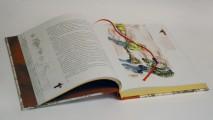 """Иллюстрации к подарочной книге """"Собачье сердце. Роковые яйца. Дьяволиада"""""""