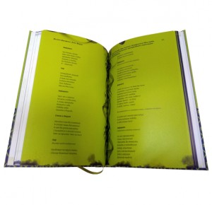 "Разворот подарочной книги ""Фауст"" Гете в двух частях - фото 11"