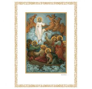 Библия. Книги Священного Писания Ветхого и Нового Завета - подарочное издание