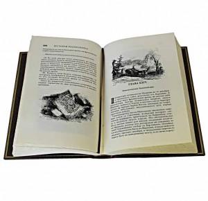 Фото разворота книги История Наполеона
