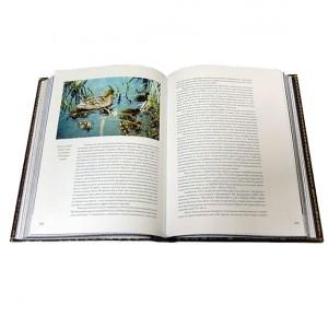 """Разворот подарочной книги с иллюстрациями """"Охота по перу"""" Фото 6"""