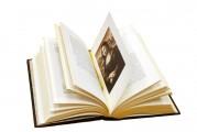 """Иллюстрации к дорогой книге """"Леонардо да Винчи"""""""