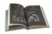 """Иллюстрации в развороте к подарочному изданию """"Любовь к жизни"""". Дж. Лондон"""